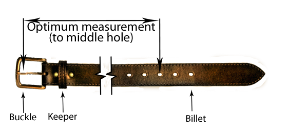 stylised belt image showing optimum belt measurement between buckle and centre punch hole